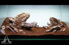 "Aquascape – ""The Rock"" @ Jag Aquatic Layout – Gallery"