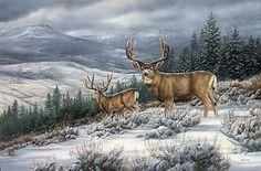 Zlom v búrke-Mule Deer