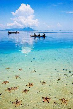 Bornéo, Malaisie | #Voyage #Travel #Malaisie #Malaysia