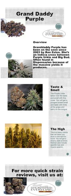 Don't Forget! Visit us at SmokeWeedEveryday.org for More Fun with Weed and Quick Strain Reviews!