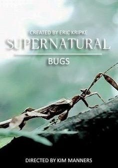 Supernatural Season 12, Supernatural Episodes, Supernatural Art, Eric Kripke, Best Shows Ever, Movies Showing, How To Become, Fandoms, Seasons