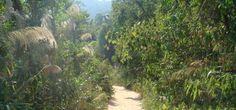 Bokor Hill Road