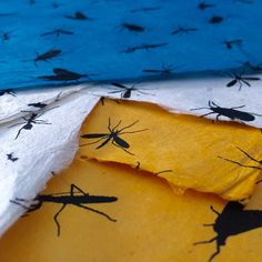 Bugs on Eco Friendly Lokta Paper!