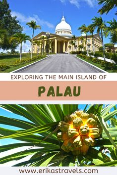 Palau's main island is a quirky travel destination. Discover its impressive capitol building, its ancient stone statues, and its quirky amusement park! Desert Island, Love Island, Battle Of Peleliu, Travel Tips, Travel Destinations, Stone Statues, Island Tour, Capitol Building, Underwater World