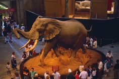 Tips for visiting the National Museum of Natural History - Washington, DC - Kid friendly activity reviews - Trekaroo