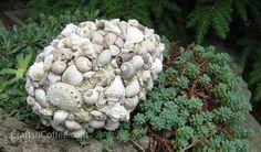 Seashell decor in garden