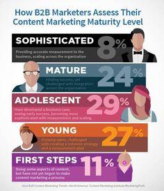 How #B2B marketers assess their #contentmarketing maturity via @contentmktg