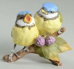 Kaiser Birds