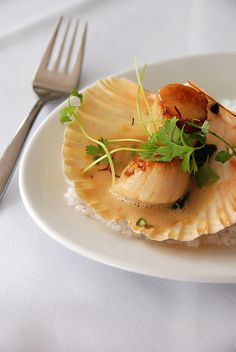 Coquilles St Jacques