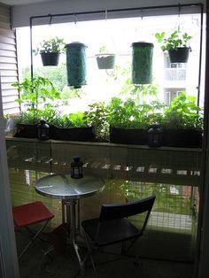 Balcony Garden - June, 2009 by Hair Squared, via Flickr