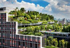 WOHA unites mixed-use singapore development beneath a terraced rooftop park World Architecture Festival, Landscape Architecture Design, Green Architecture, Residential Architecture, Pavilion Architecture, Sustainable Architecture, Contemporary Architecture, Design Blog, Design Studio