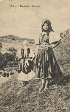 Pavol Socháň: Žnice v Ponikách (Zvolen) Slovakia Heart Of Europe, Folk Clothing, Vintage Pictures, Vintage Photographs, Ancestry, Genealogy, Mythology, Character Design, Artist