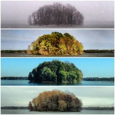 Fantastic photo project idea: revisit the same place throughout the seasons.    This one was done by living-planet on tumblr, you might also like Paul Octavious' Same Hill, Different Day.  (via noyoudontunderstand)