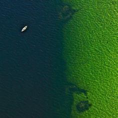 green seen. bernhard lang, no. 2