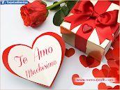 Mensajes bonitos para muro de facebook, imágenes, postales y tarjetas con frases para románticas para enamorados.