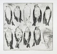 "rfmmsd: "" Printmaker & Artist: Margaret van Patten ""The Art of War"" Etching x "" Oui Oui, Gravure, Art Sketchbook, Bird Art, Art Inspo, Painting & Drawing, Art Drawings, Moose Art, Illustration Art"