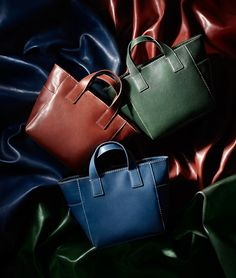 Lion Photography, Photo Bag, Lions, Madewell, Female, Bags, Accessories, Fashion, Handbags
