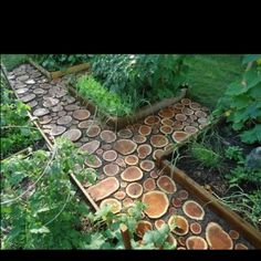 Garden path made of tree rings. Picture from the Backyard Diva