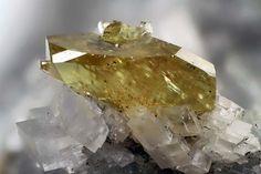 Monazite-Ce). Trimouns Talc Mine, Luzenac, Ariège, France Taille=2.25 mm Photo Matteo Chinellato / Collection Domenico Preite