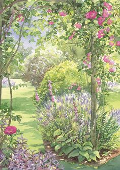 Dorothy Pavey - The Society of Botanical Artists Landscape Artwork, Watercolor Landscape, Watercolor Paintings, Watercolours, Garden Painting, Garden Art, Nature Artists, Illustrations And Posters, Anime Art Girl