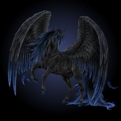 Pictures of Pegasus | Black Pegasus by ~Howrseprofile on deviantART