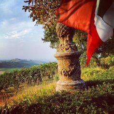 #valtidone #oltrepo #vigneti #vendemmia #luzzano #tricolore #piacenza #winelovers #vino