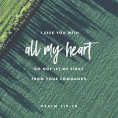 """I try with all my heart to serve you. Help me obey your commands."" ‭‭Psalms‬ ‭119:10‬ ‭ERV‬‬ http://bible.com/406/psa.119.10.erv"