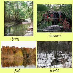 H2O Seasons changing along Missouri watercourses.