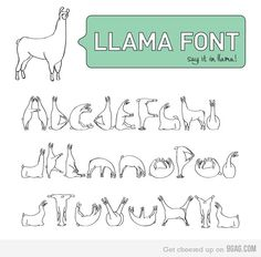 This is freakin adorable! I love this font and llamas even more lol