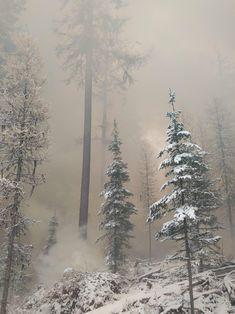 Snowy forest on fire. Beauty in the midst of destruction. Northern Washington [3264x2448] http://ift.tt/2lR59yO