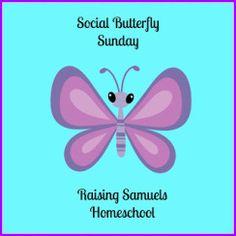 social butterfly sunday
