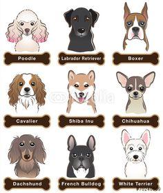 벡터 일러스트(편집용 파일):Dog / Nameplate
