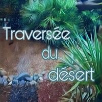 Traversee Du Desert by Rudiano on SoundCloud