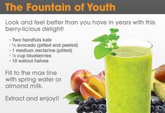 The Fountain of Youth NutriBullet Recipe
