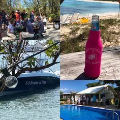 Meathead in Paradise, Green Turtle Cay, Bahamas Green Turtle, Letting Go, Alcoholic Drinks, Paradise, Around The Worlds, Adventure, Bottle, Flask, Fairy Tales