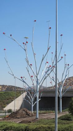 this public intervention of modular trees which openings in which branches of bird houses and perches can be in inserted in various arrangements creating an area in which birds can circulate and flock towards.