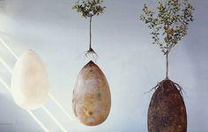«Capsula Mundi» c'est le nom d'un concept de capsule funéraire qui vous «transforme» en arbre après votre décès…