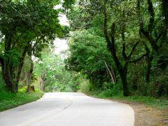Estrada de Monteiro Lobato, Sao Jose dos Campos - SP