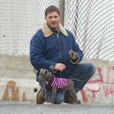 Tom Hardy and his cute puppy. Awesome doggy sweater!