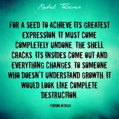 growth sometimes requires destruction..to those who do not understand it may look like utter madness....