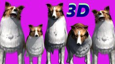 Finger Family || PET DOGS  Version || Children Animated 3D Rhymes