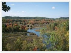 Huron Manistee National Forest