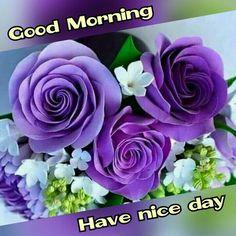 Good Morning Sister, Good Morning Saturday, Good Morning Messages, Good Morning Good Night, Good Morning Images, Gd Morning, Morning Texts, Good Night Greetings, Morning Greetings Quotes