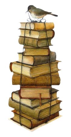 Little bird illustration marjolein bastin 28 ideas for 2019 I Love Books, Books To Read, Marjolein Bastin, Images Vintage, Old Books, Vintage Books, Pile Of Books, The Book, Book Worms