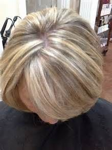Gray Hair Highlights and Lowlights - Bing images