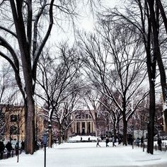 Penn State University, Pattee-Paterno Library, beautiful snow. Love my campus <3