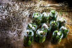 Food Fundamentals: Pickles   at Culture.pl