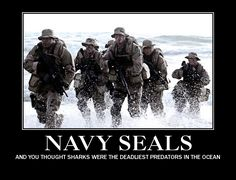 Navy SEALS What is there not to like about our brave boys and girls?  Just be proud of our military and our nation and say thanks to all those who have given or are still giving their all to protect us.