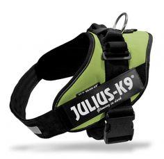 IDC Medium Dog Harness - Julius K9 UK