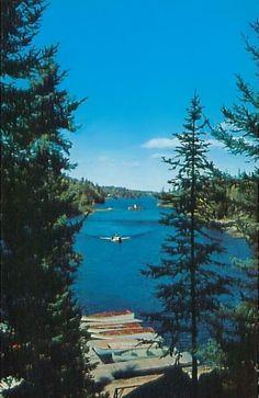 End of the Trail Lodge - Tower, Minnesota Postcard